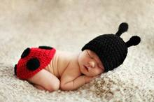 1set Ladybug Handmade Photography Props Clothe Newborn Baby Boy Animal Costume hats Knitted Infant Suit Beanies Crochet Caps