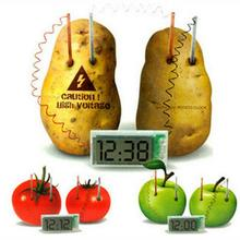 BOHS Circuit Potato Clock Science Kit Electronics Discovery Power Generation Physics Science Toys(China)