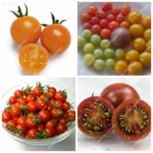Promotion Heirloom 100pcs Mixed Color Cherry Tomatoes Vegetable Bonsai Seeds Balcony Fruits Seed Easy Grow Light up Your Garden(China)