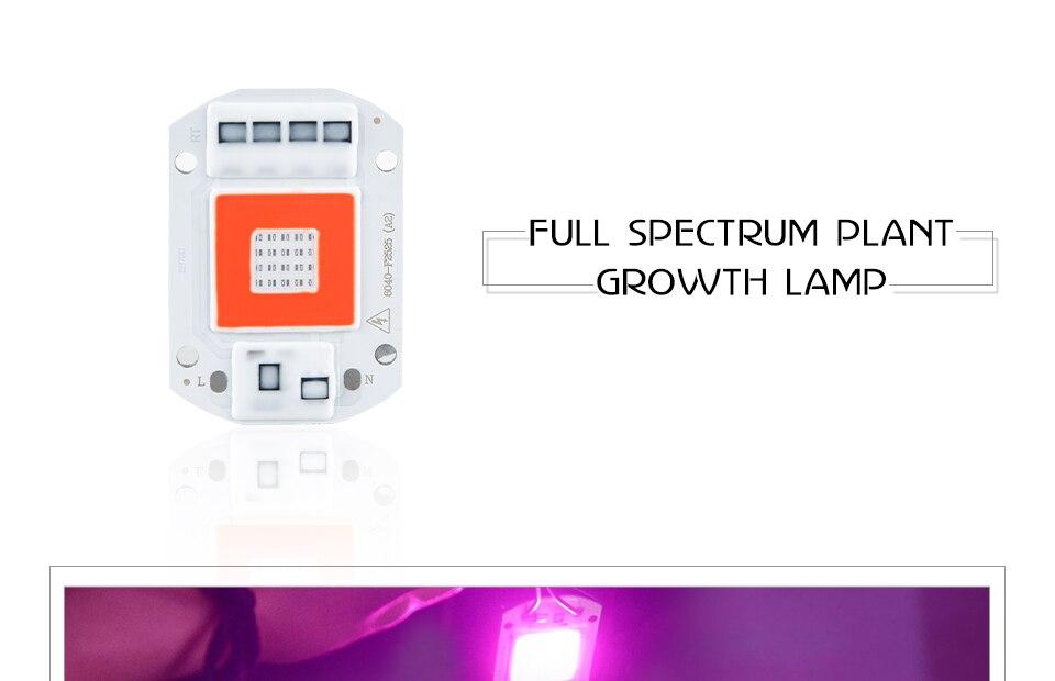 grow led cob chip (1)