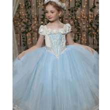 2-7Years Girls Cinderella Dresses Princess Dress+Shawl Fairy Tail Toddler Baby Wedding Party Sheer Dress Cosplay Costume Clothes(China)