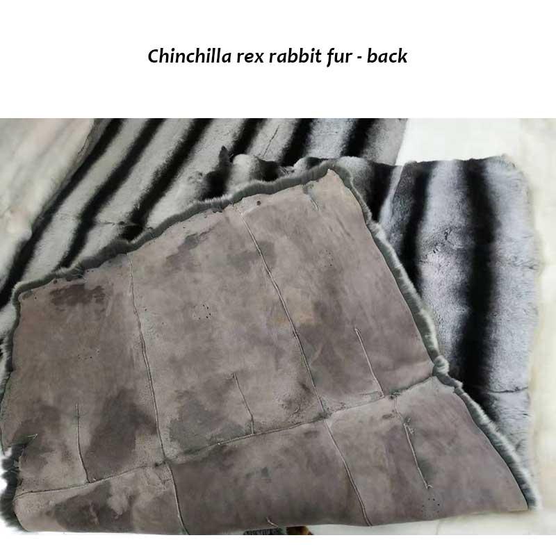 rex rabbit plates chinchilla back