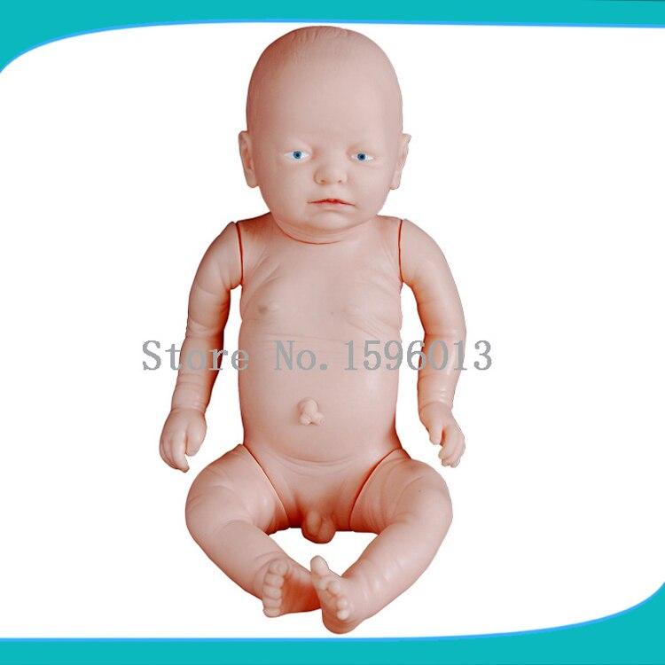 HOT SALES Newborn baby model, Primary fetal model<br>