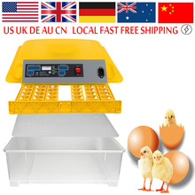48 Eggs Incubator Automatic Chicken Egg Incubadora Poultry Hatcher Chicken Plucking Machine(China)
