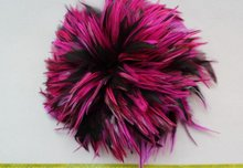 "500pcs Selected fuschia black Rooster Saddle Feather Hair accessories 3-6"" 2 tones hand selected loose feather"