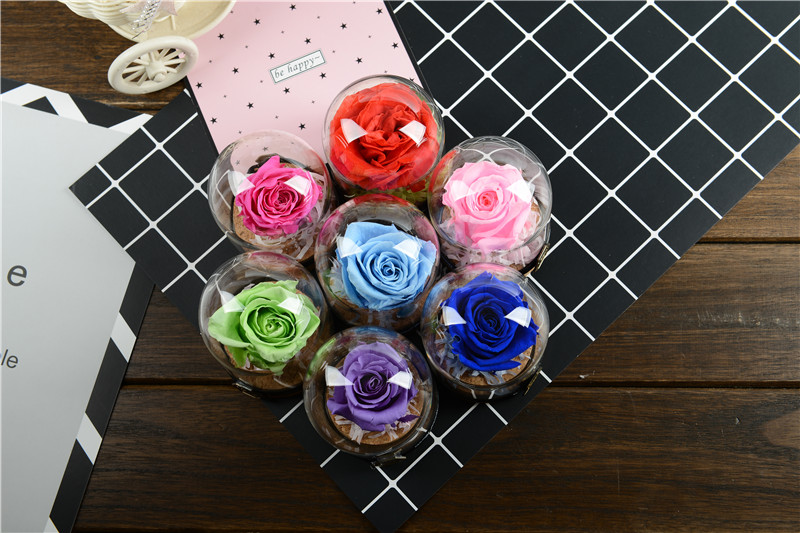 The Mini Glass Cover Fresh Preserved Rose Flower 7 different Color For Wedding Home Party Decoration