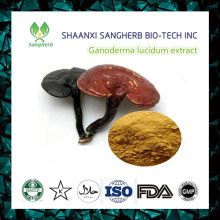 500g Dried Lingzhi Reishi Mushrooms Ganoderma Lucidum Chinese Wild Anti-cancer Improve Immunity Free shipping(China)