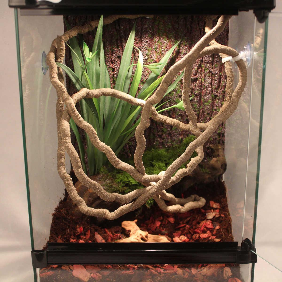 Detail Feedback Questions About Terrarium Reptile Flexible Jungle
