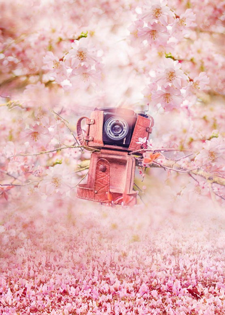 Spring photo background pink blossom photography backdrops for photo studio photographic background fotografia props<br>