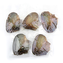 1pc/5pcs/10pcs/25pcs Freshwater Vacuum-pack Oyster Wish Pearl Mussel Shell with Pearl Inside Different Color Pearl Surprise Gift