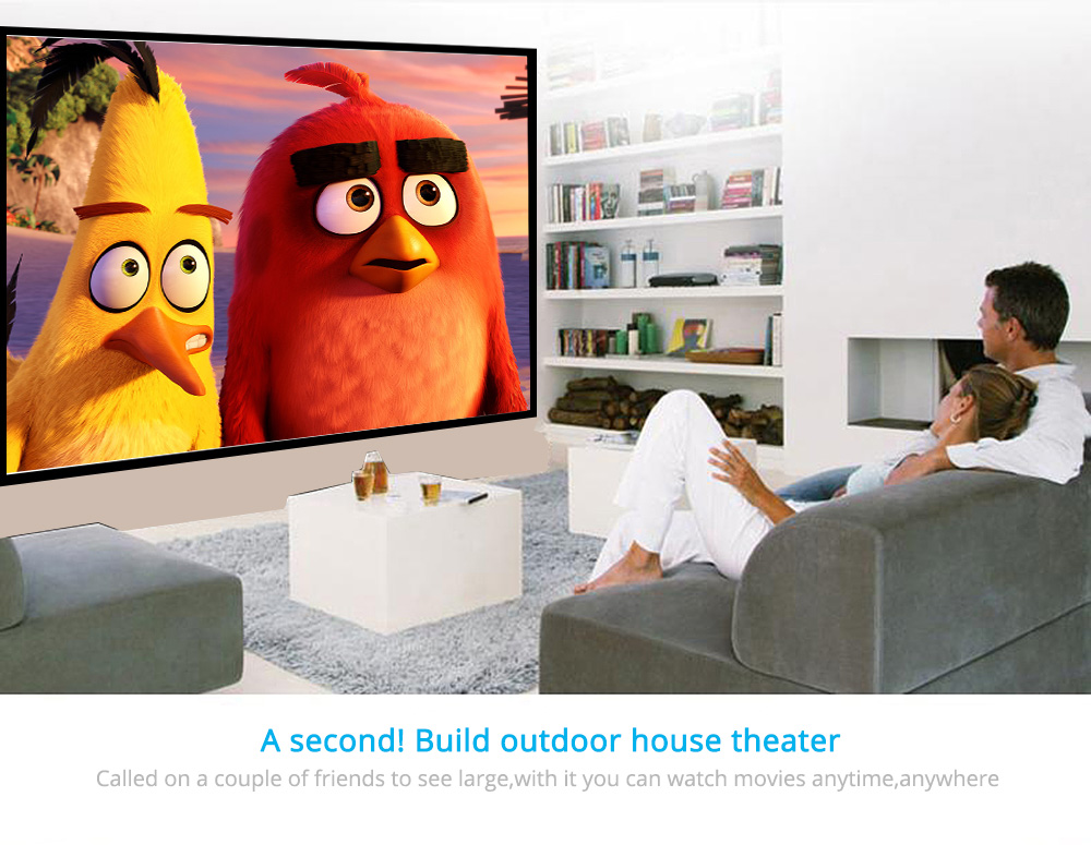 Wall Mounted Projector Screen 5