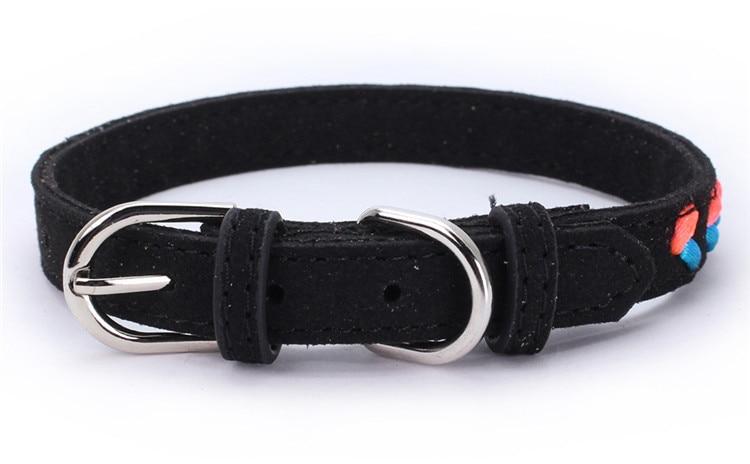 dogs collar (5)