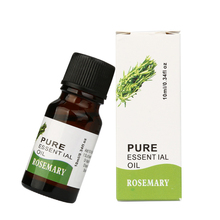 Best Deal New Good Quality Rosemary Flavor 10ml 100% Pure & Natural Essential Oils Aromatherapy Scent Skin Care Relax Body Oil