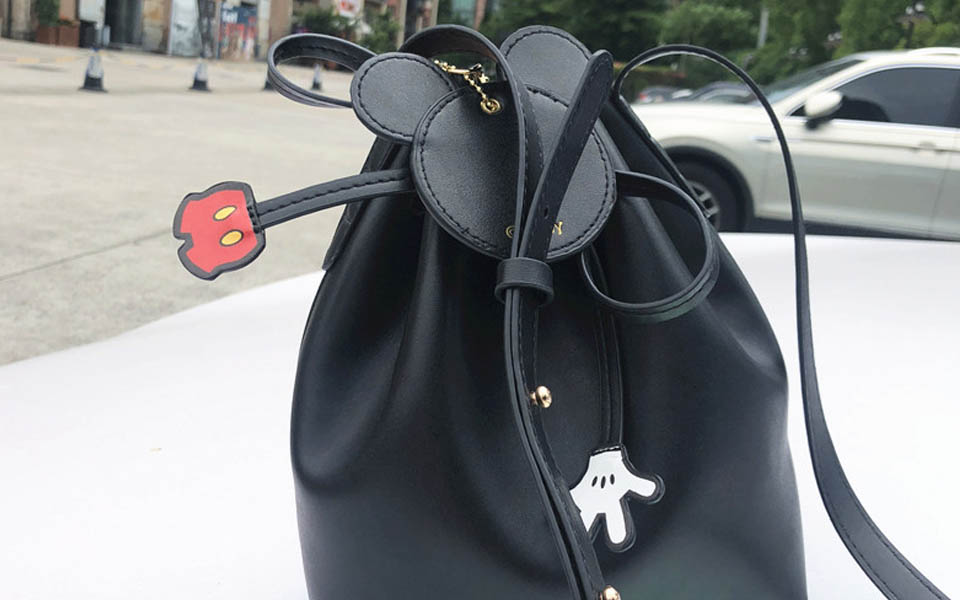 Mickey Mouse bag (19)