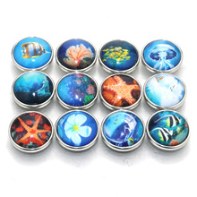 10pcs/lot Random starfish seabed fish Snap Buttons Beads 18mm Print Glass Cabochon Fit DIY Snap Bracelets&Bangles Jewelry 020105