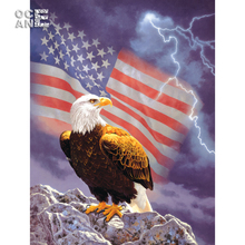 national flag and eagle diy 5d diamond painting cross stitch kits full square diamond embroidery animals mosaic painting E199(China)