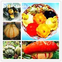 Ornamental-edible-vegetables-seeds-30Seeds-bag-Pumpkin-Squash-Heirloom-Seeds-for-home-garden-planting-easy-to.jpg_200x200