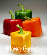 100 PCS / Pack, Rarest Mixed Orange Green Red Yellow Square Sweet Pepper Seeds, Edible Tasty Vegetables,#66VZP0