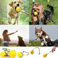 Indestructible Solid Rubber Ball provide entertainment exercise Pet Dogs Cats Training Chew Play Fetch Bite Toy t123(China)