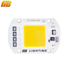 Ming&Ben LED COB Lamp Chip 5W 20W 30W 50W 220V 110V Input Smart IC Driver Fit For DIY LED Floodlight Spotlight Cold/Warm White