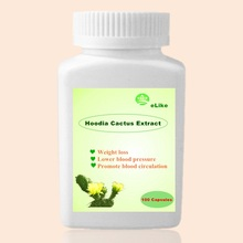 1 Bottle Nature Hoodia Cactus Extract burn fat Pure Hoodia gordonii extracts(China)
