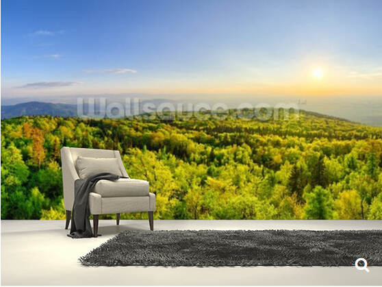 Custom natural landscape wallpaper,forest on Sleza mountain, Poland,3D photo mural for living room restaurant bedroom wall<br>
