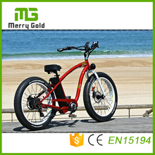 Electric bicycle fat tire electric bike MTB muntain ebike for adult hummer china 48v 750w e-bicycle(China)