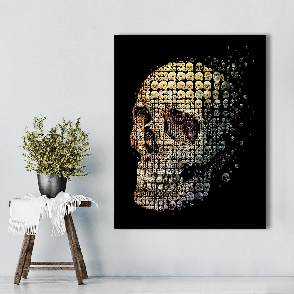 Skull evolution-3
