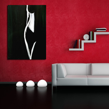 QCART Wall Art Pictures For Living Room Home Decor Modern Nude Painting Female Form Black White Canvas Art Painting No Frame