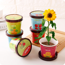 DIY Office Prevent Radiation small potted plants  Sunflower chili radish chrysanthemum tomato seeds with Pot + Soil
