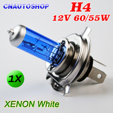 H4 12V 60/55W Halogen Bulb Xenon Bright Dark Blue Glass Stainless Steel Base Auto Super White Car Fog Lamp(China)