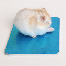 Small Pet Hamster Summer Heat Sink Board Ice Steel Plate House Heat Dissipation Plate Rabbit Totoro Gerbil Cage Decor 8*12cm(China)