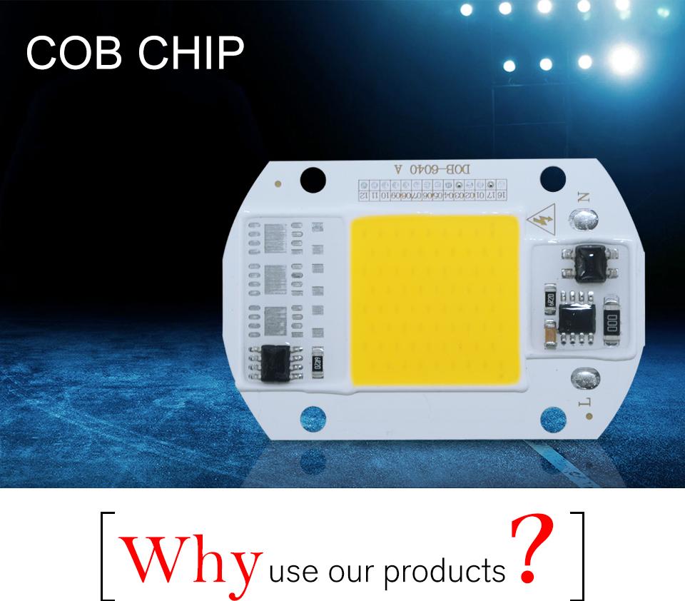 led cob lamp bulb white warm white 220v 110V with smart ic driver (1)