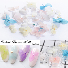 1Box 3Pcs Colorful Dried Flower 3D Nail Decoration Preserved Flower Nail Art Decorations(China)