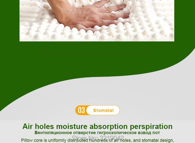 Massage-Latex-Pillows-790-01_10