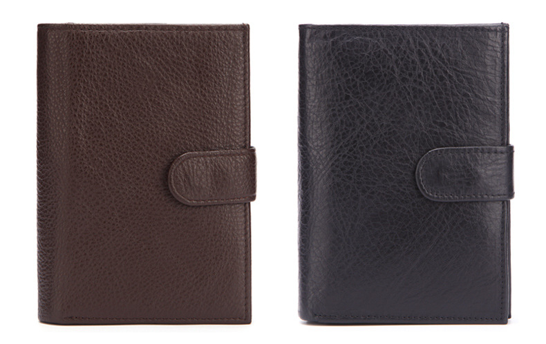 brown passport cover (9)