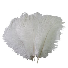 NEW Wedding DIY Crafts Decorations 10pcs White Ostrich Feathers 25cm Wedding Home Decoration Ornament