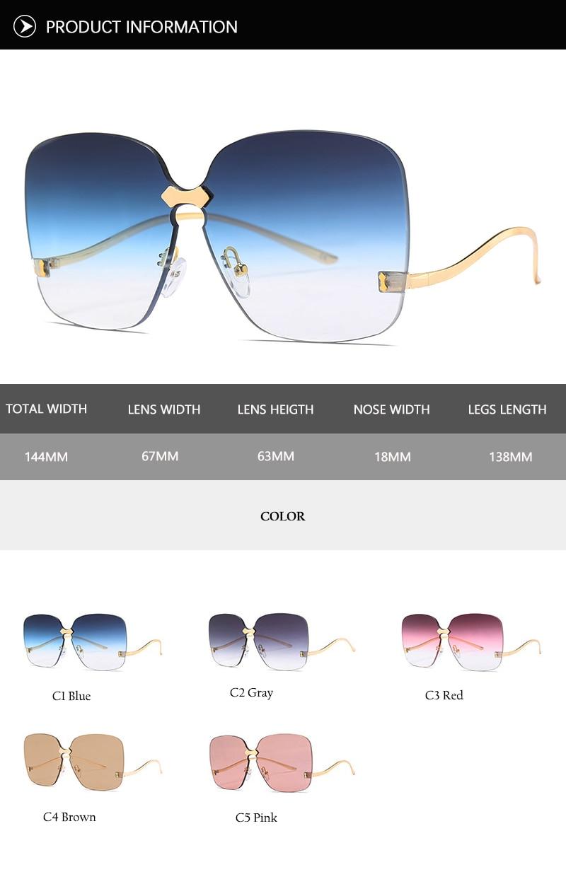 oversized sunglasses (16)