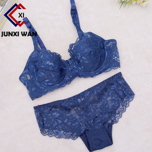 Buy Lace Bra Set Women Plus Size Push Bra Panty Set Underwear Lingerie Set Sexy Transparent Bras Bralette Sets Intimates