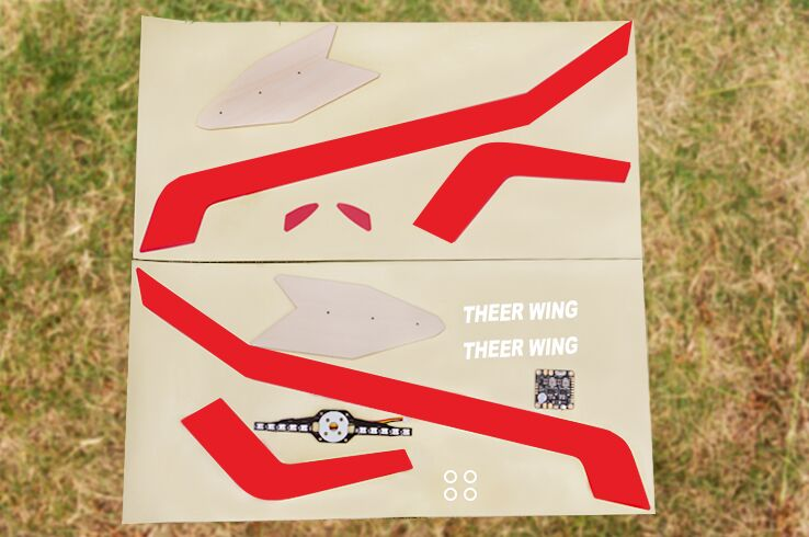 Skyzone THEER FPV Flying Wing 860mm Wingspan EPP RC Airplane with PDB & LED Board – KIT Version