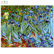 Frameless picture on wall acrylic painting by numbers diy canvas painting art Christmas gift coloring by numbers Abstract iris