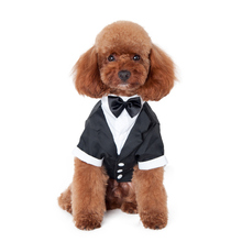 Black Pet Dogs Gentleman Clothes Bow Tie Puppy Dog Groom Wedding Suit Formal Party Costume(China)