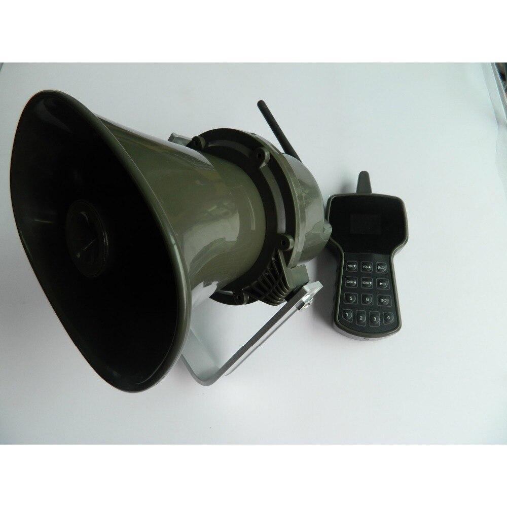 DSCN5425