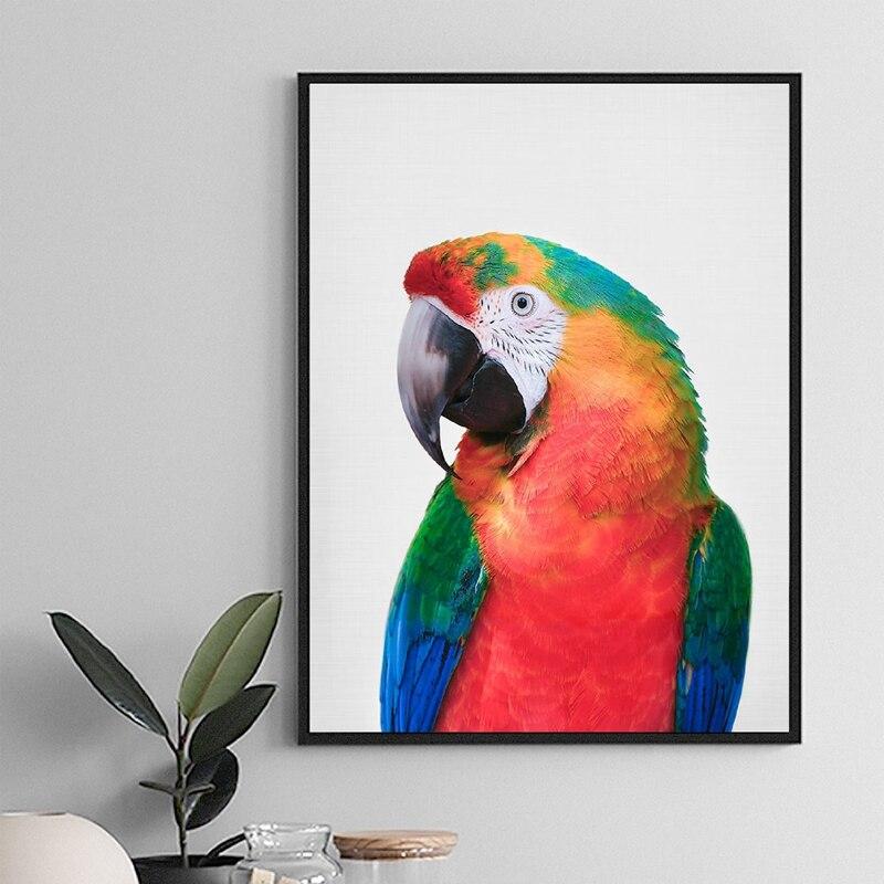 PARROT  MACAW TROPICAL BIRD Vinyl wall art sticker decal