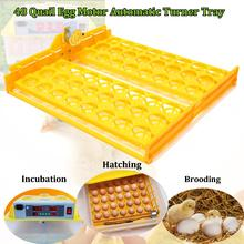 New 220V Motor 48 Eggs Quail Bird Poultry Turner Tray With Teching Incubator Automatic Farm Equipment Tools Small Eggs(China)