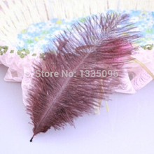 10PCS / brown natural ostrich feather fan manufacturing 15-20CM6-8 inch new Christmas Halloween Party(China)