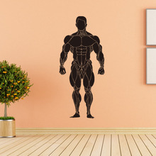 Bodybuilding GYM Sexy Muscle Men Wall Decals Classic Sport Wall Art Pic Home Decor Living Room Mural(China)