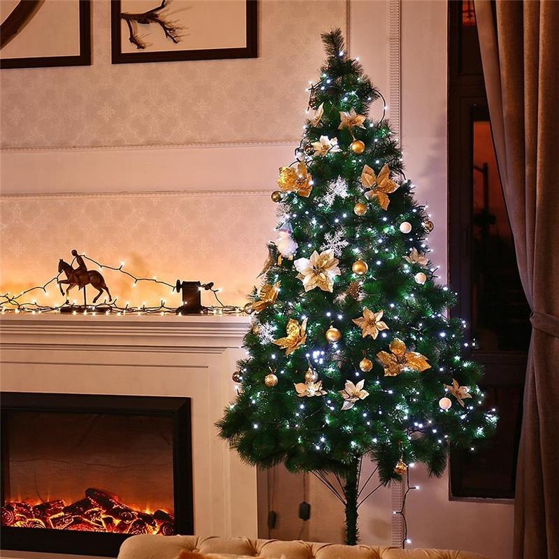 Dimmable LED Christmas Lights (2)