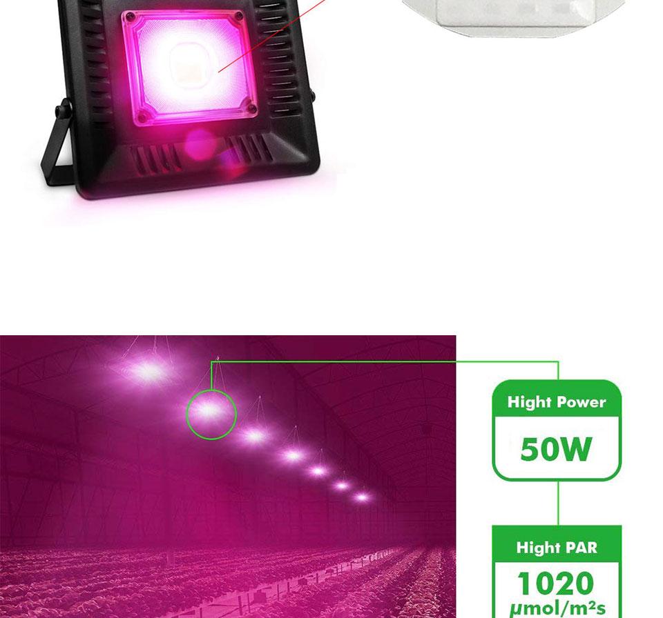 AC 110V 220V LED COB Lamp Chip 20W 30W 50W 100W 150W Full Spectrum LED Plant Grow Light Driverless Smart IC DIY LED Floodlights (16)