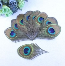 Free shipping  Wholesale 10 pcs beautiful  Natural golden peacock feather 8-10 cm / 3-4 inches